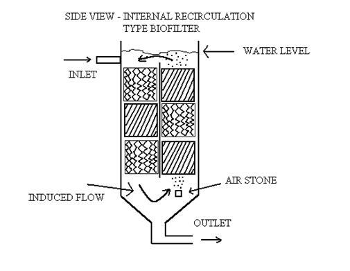 Fish tank filter diy airlift system diy projects for Biological pond filter design